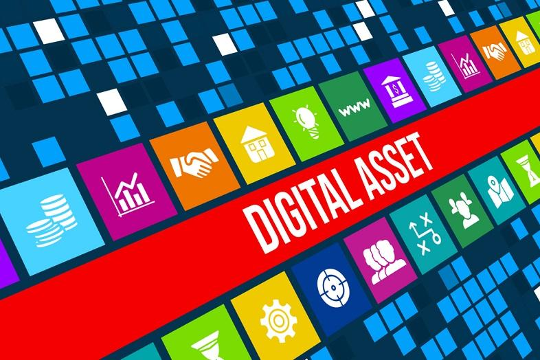 digital-asset-management-software-pros-cons